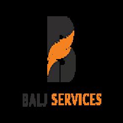https://www.internetmarketingschool.co.in/ims-digi-hire/company/balj-services-private-limited
