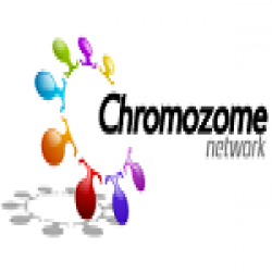 https://www.internetmarketingschool.co.in/ims-digi-hire/company/chromozomes-network-private-limited